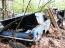 Broken Dreams 1 - Forgotten Mustangs